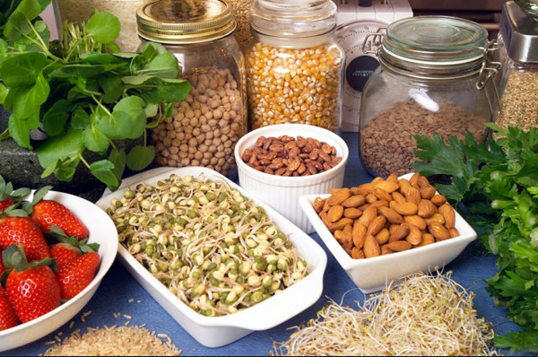 Fiber Rich Diets and Vitamin A May Prevent Allergies