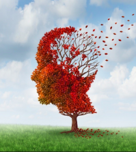 Neurodegeneration Linked with Low Levels of CoQ10   www.naturallyhealthynews.com