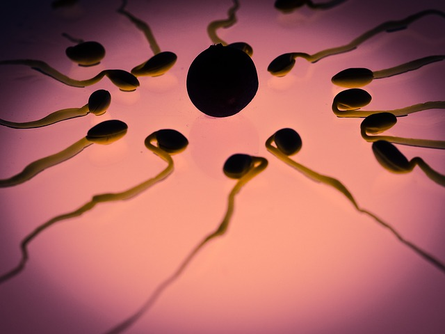 How To Improve Fertility With This One Natural Method