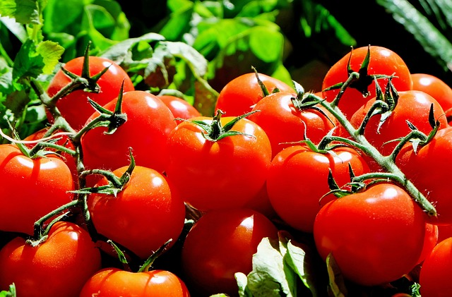 Eating Tomatoes Could Slash Your Skin Cancer Risk In Half