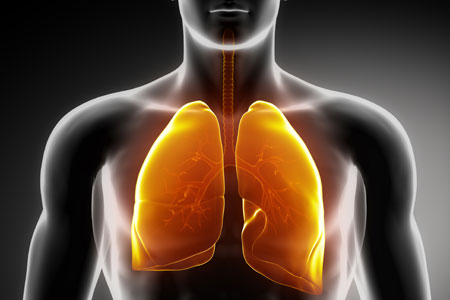 Curcumin Can Help Prevent Lung Cancer