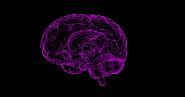 AMD Could Increase Risk of Brain Hemorrhage