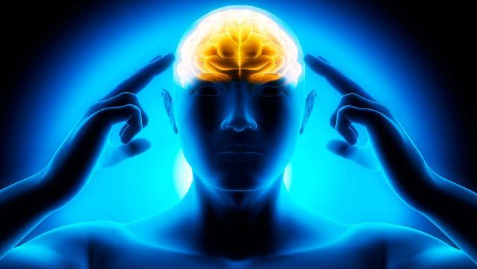 Need a Brain Boost? Go Gluten Free!