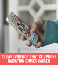 'Clear Evidence' That Cellphone Radiation Causes Cancer