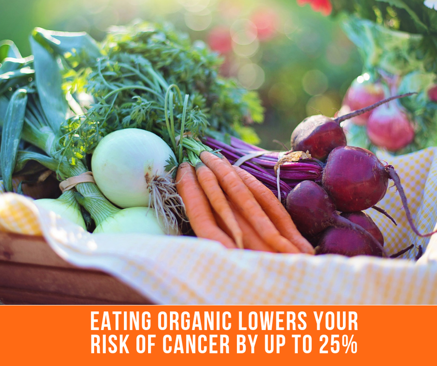 Eating Organic Produce Lowers Your Risk Of Cancer By 25%