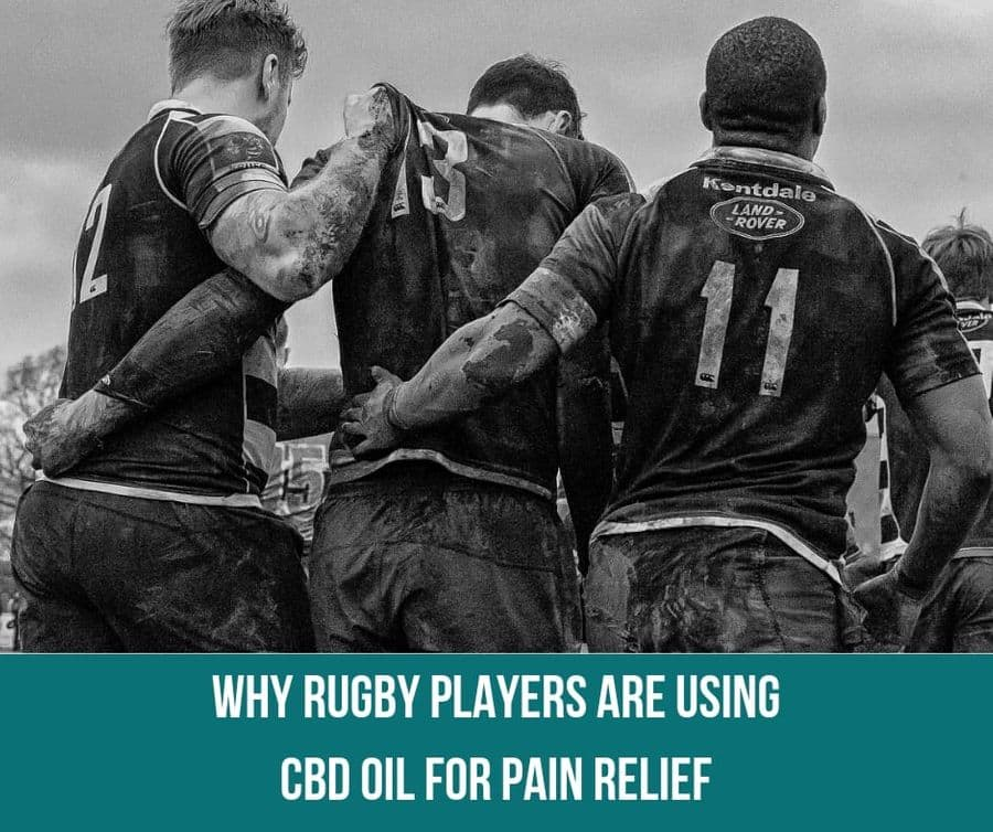 Why Rugby Players Are Using CBD Oil For Pain Relief