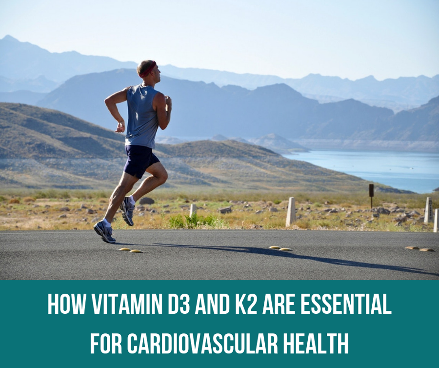 How Vitamin D3 And K2 Are Essential For Cardiovascular Health