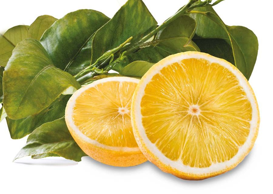 How Bergamot Can Lower Your Cholesterol and Support Your Heart Health