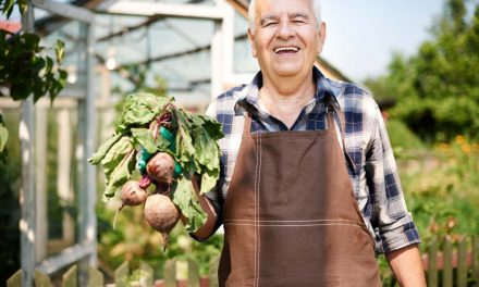 Over 50? Here's 5 Of The Best Nutrients Men Should Take For Good Health