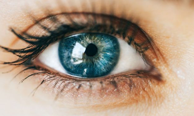 Need A Healthy Eye Boost? Here's Why Bilberry Could Be The Answer…